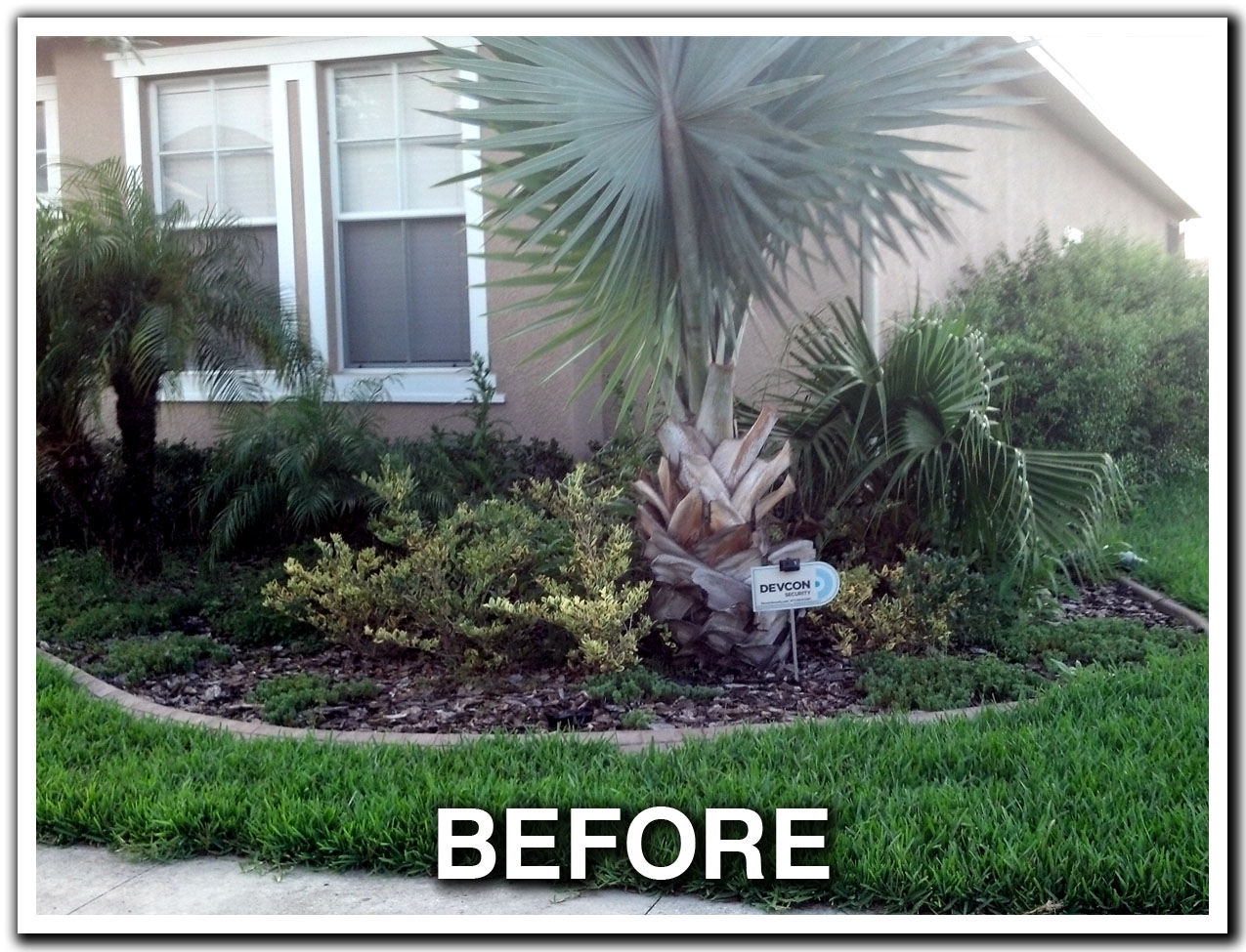 LANDSCAPING, LAWN CARE, MAINTENANCE, BUSH HOG, BUSH HOGGING, TRACTOR WORK, SERVICE, MOWING, MOW, LANDSCAPE LIGHTING,SOD, SOD INSTALLATION, SODDING SERVICES,  LUTZ, ODESSA, LAND O LAKES, WESLEY CHAPEL, NEW TAMPA, COMMERCIAL, RESIDENTIAL, FLORIDA, FL