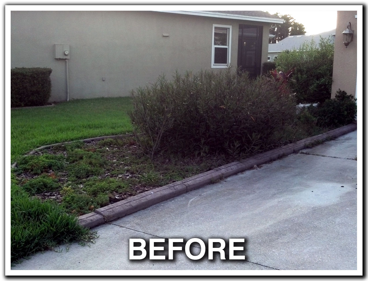 LANDSCAPING, LAWN CARE, MAINTENANCE, BUSH HOG, BUSH HOGGING, TRACTOR WORK, SERVICE, MOWING, MOW, LANDSCAPE LIGHTING, SOD, SOD INSTALLATION, SODDING SERVICES, LUTZ, ODESSA, LAND O LAKES, WESLEY CHAPEL, NEW TAMPA, COMMERCIAL, RESIDENTIAL, FLORIDA, FL